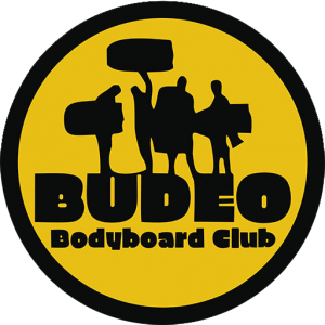 cropped-iconoweb-budeo.png